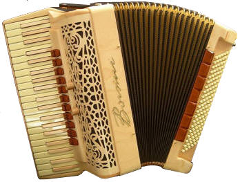 Custom Made Accordion